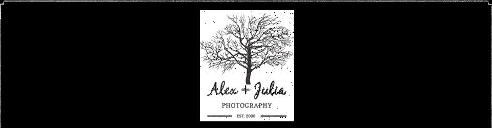 Fotógrafos de Bodas en Hermosillo Alex+Julia logo